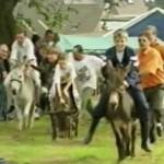 ezelkoers Sombeke 1998 VTM nieuws